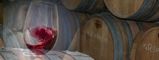 Visita a Celler Sabate